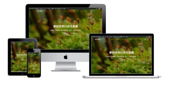 網頁設計-響應式網頁設計87